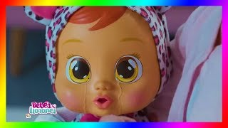 Bebés Llorones💜 Bebes Juguetes para niñas 💜videos para niñas | KidsTmeTV thumbnail