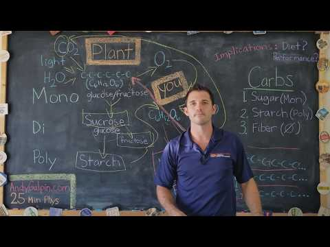25 Min Physiology- Carbs vs. Fat: Clarifying the Confusion