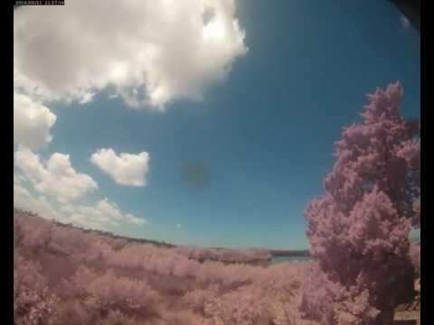 Cloud Camera 2016-08-11: Pasco Energy and Marine Center