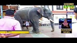 ഗുരുവായൂര് ക്ഷേത്രത്തില് ആനയുടെ കുത്തേറ്റ് പാപ്പാന് മരിച്ചു