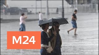 Смотреть видео Дожди в Москве продолжатся в субботу - Москва 24 онлайн