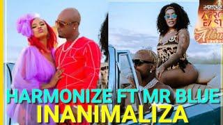 Harmonize Ft Mr Blue -Inanimaliza (Official Music Video)AfroEast Album