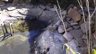 чистить пруд очистка водоемов от ила ландшафтный дизайн особенности искусственный водоем  .mp4