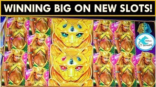 BIG WINS ON SLOTS NEW TO US! 😻 DESERT CATS SLOT MACHINE, HIGH VOLTAGE BLACKOUT SLOT
