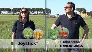 Le soluzioni per il diserbo dei cereali attraverso le voci di ASCENZA