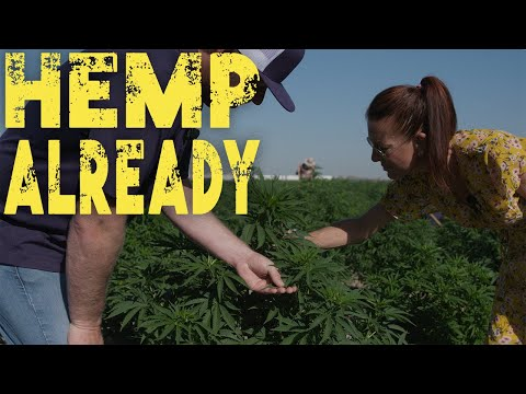 HEMP ALREADY – Episode 1, hemp paper company TINY e PAPER