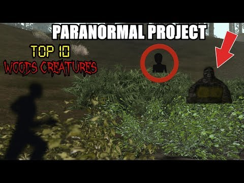 TOP 10 Woods Creatures Caught on Tape in GTA San Andreas  PARANORMAL PROJECT