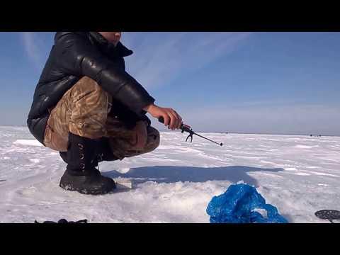 отчеты о рыбалке озеро мостовое завьялово