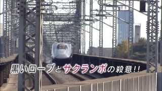 高田カメさん初登場!