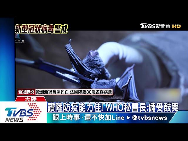 華南市場旁有蝙蝠實驗室 陸學者:疑病毒洩漏