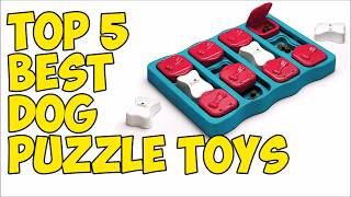 Top 5 Best Dog Puzzle Toys in 2020 👍