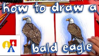 How To Draw A Realistic Bald Eagle