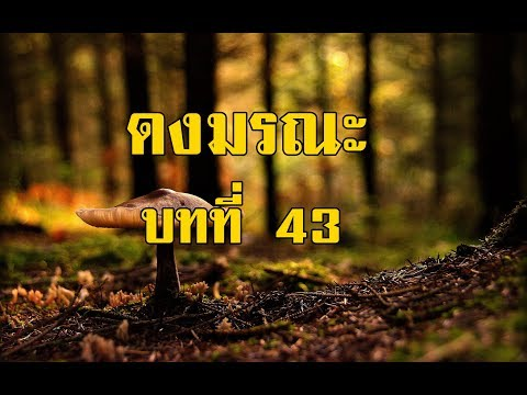 เพชรพระอุมา ดงมรณะ บทที่ 43 | สองยาม