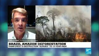 Amazon deforestation surges to 12-year high, drawing condemnation of Bolsonaro