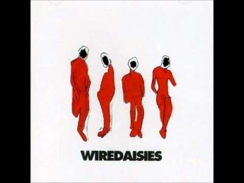 Wire Daisies - The Great Outdoors