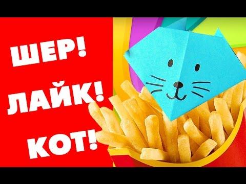 Шер лайк кот реклама