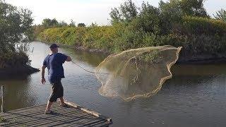 Зарыбленный пруд.Рыбалка Кастинговой сетью.