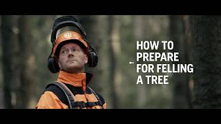 How to fell a tree – Husqvarna Chainsaw Academy