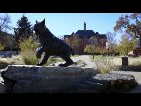 Montana State University Visit Video