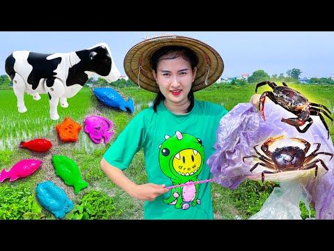 ChangCady xả rác và bài học vớt rác được con tôm, con cua, đồ chơi con bò