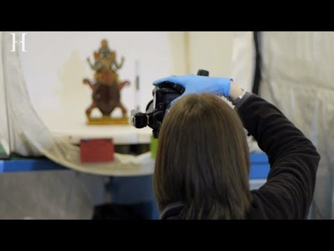 Horniman Museum and Gardens: Behind the Scenes