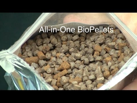 Testing the AIO BioPellets - ReefKeeping Video by AmericanReef - Start a Saltwater Aquarium