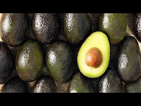Why You Should Never Throw Away Avocado Seeds Again!