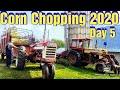Chopping Corn 2020: Day 5