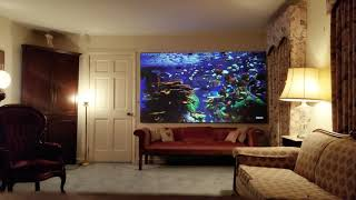 "110"" DE Pulsar 1.2 ALR Projection Screen"