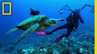 Understanding the Oceans | Sea of Hope  America's Underwater Treasures