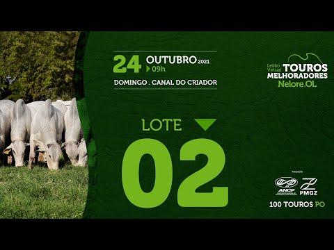 LOTE 2 - LEILÃO VIRTUAL DE TOUROS MELHORADORES  - NELORE OL - PO 2021