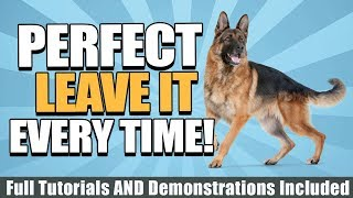 How To Train Your Dog To Leave It With Tutorials, Demonstrations, And More!