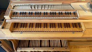 J. S. Bach: Sonata in D Minor BWV 527 | Bálint Karosi | Pedal Clavichord