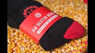 Empfehlung des Produktmanagers Mais zu LG 30.258 und LG 31.256