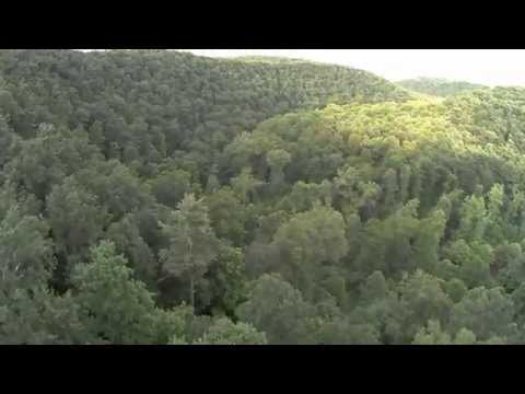 THE BEST Drone View Of Mohican State Park Gorge