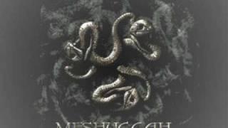 Meshuggah - Dehumanization