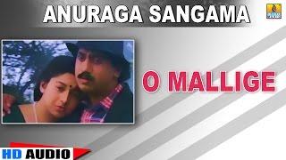 O Mallige | Anuraga Sangama | feat Kumar Govind, Ramesh, Sudharani