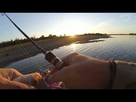 Вечерняя рыбалка на реке Бия 17-08-2017
