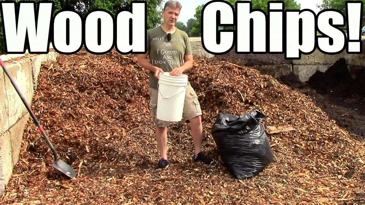 How & Why I Use Wood Chip Mulch in the Garden! - YouTube