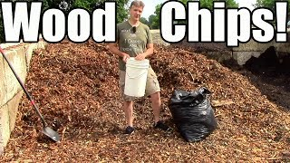 how why i use wood chip mulch in the garden
