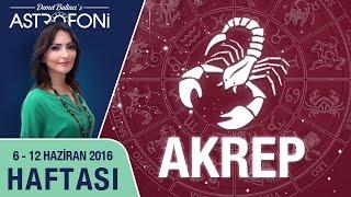 AKREP burcu haftalık yorumu 06 - 12 Haziran 2016