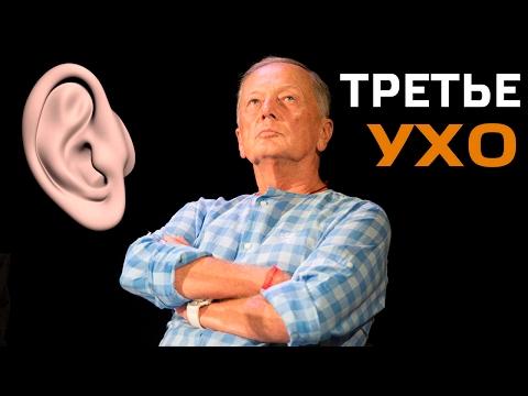 Концерт Михаила Задорнова 'Третье ухо'
