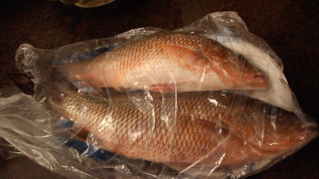 how to prepare snapper fish