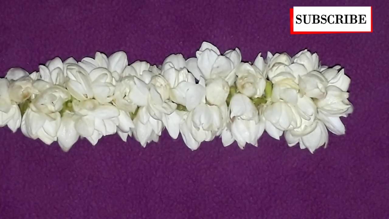 How To String Jasmine Flower Garland Madurai Mullai Poo Garland