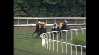 Lure -vs- Paradise Creek - 1994 Bernard Baruch Handicap