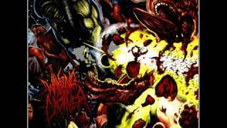 Bloodsplattered Satisfaction-Waking The Cadaver