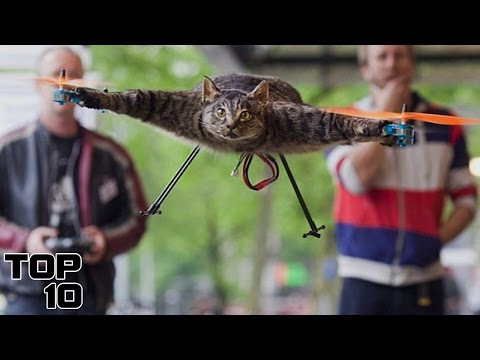 Top 10 Dumbest Things People Have Done With A Drone
