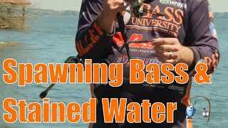 Catch Spawning Bass Fishing Stained Water