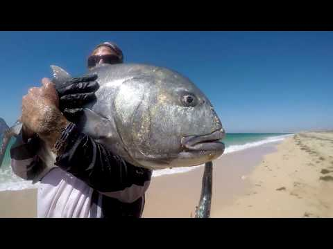 Frontline Fishing The Dream EP 1