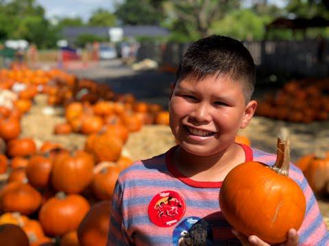 Pumpkin Patch!!